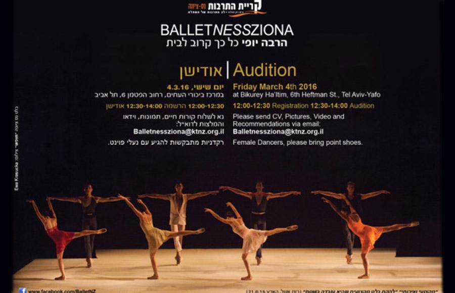 balletnesszona